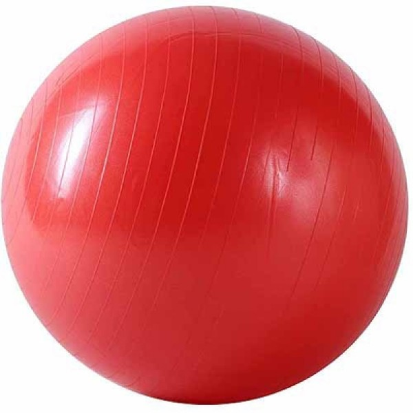 Sunny Health and Fitness Anti-Burst Gym 55cm Ball - Red
